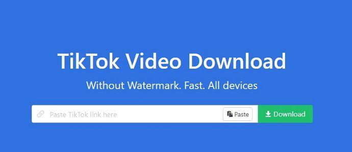 tiktok downloader without watermark free